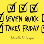 7 Quick Takes on Blogging, Still More Dancing, and GTD